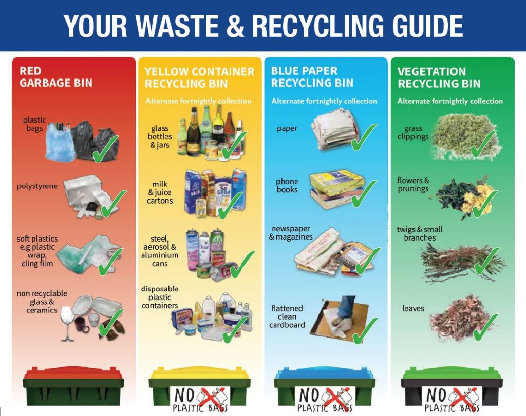what goes in each bin