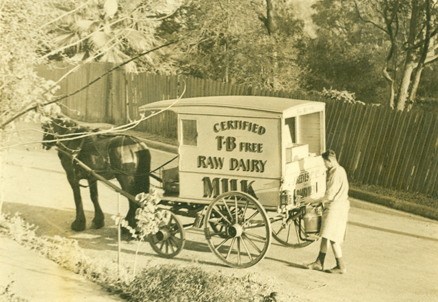 <h4>The Milkman</h4> <p>Reeves Dairy Milkman delivery Crescent Street.</p>