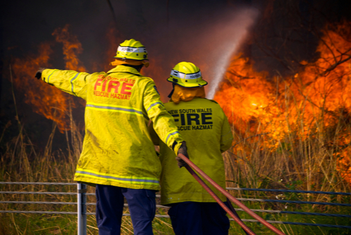 Bushfire Risk Management Plan for Hunters Hill