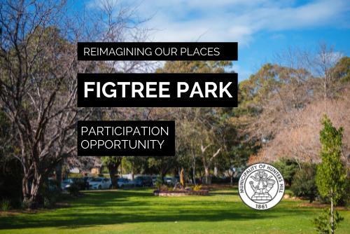 Figtree Park: Community meetings