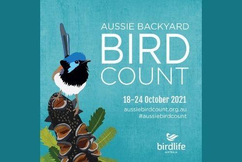 Bird Count 2021
